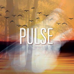 Pulse @ Gent, Belgium